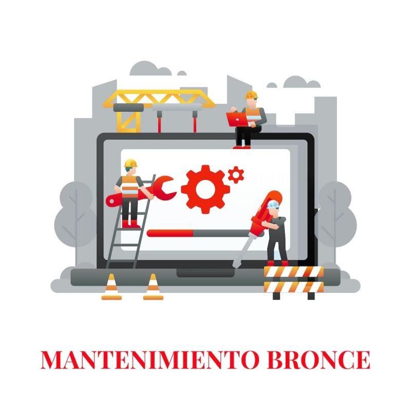 mantenimiento web bronce