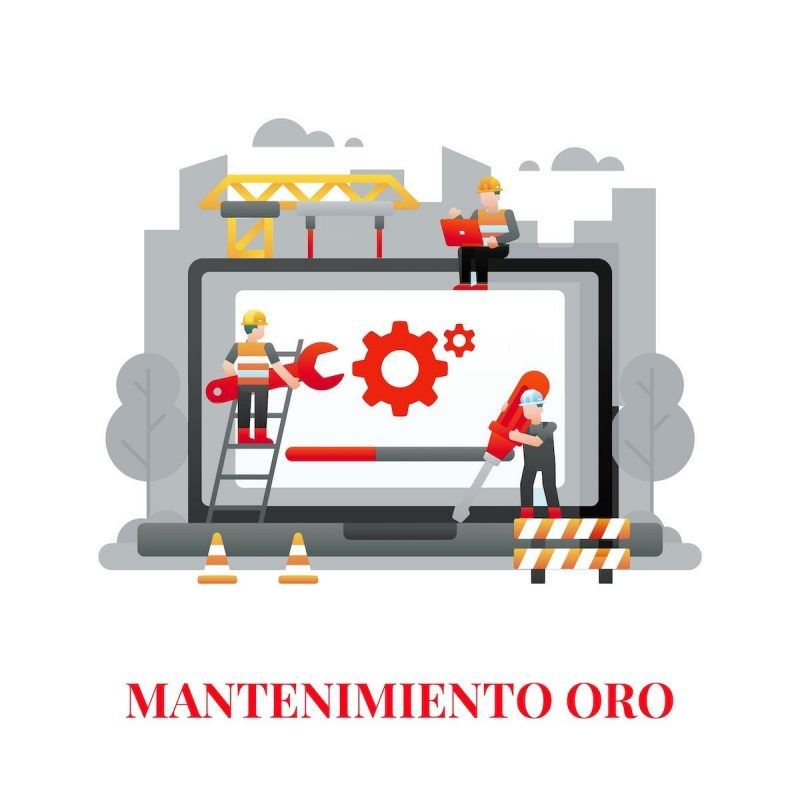 mantenimiento web oro