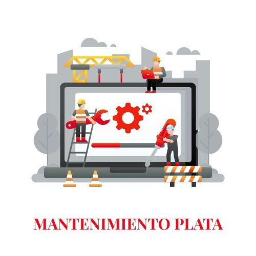 mantenimiento web plata